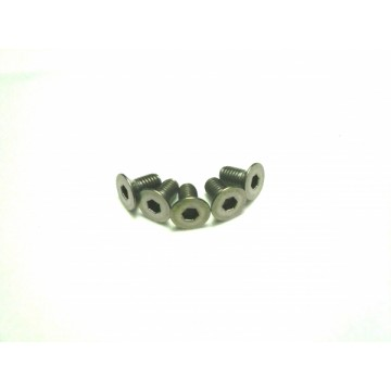 Team Powers Titanium Screw 8pcs, 3 x 6mm (Flat Head)